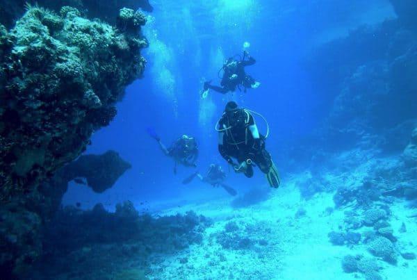 台北潛水課程推薦