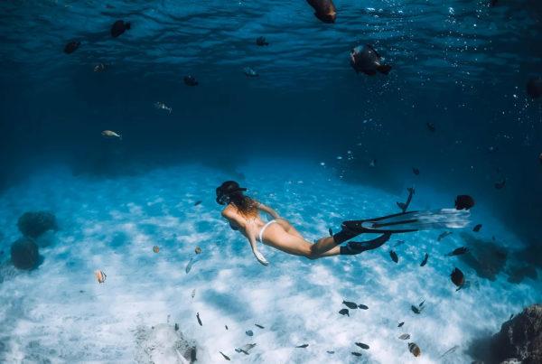 【heyhey Dive評價】AIDA專門台北自由潛水,跟著教練一起探索水下世界
