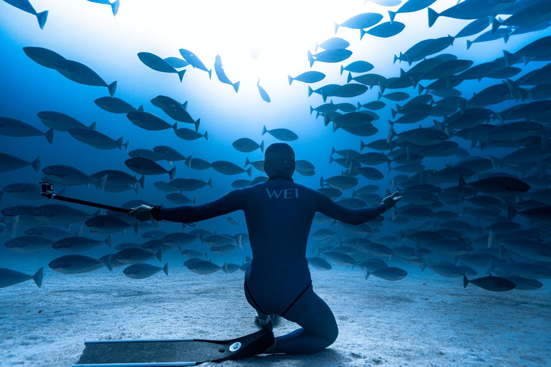【heyhey Dive評價】超Chill台中自潛工作室,團練、潛旅讓自由潛水成為日常